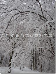 2014_0109_073846-IMGP1522